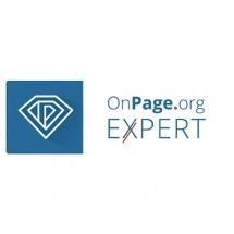 onpage.org SEO Experten Agentur