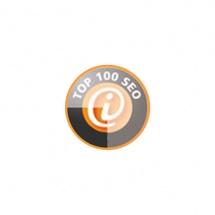 TOP 100 SEO Agentur aus Dresden