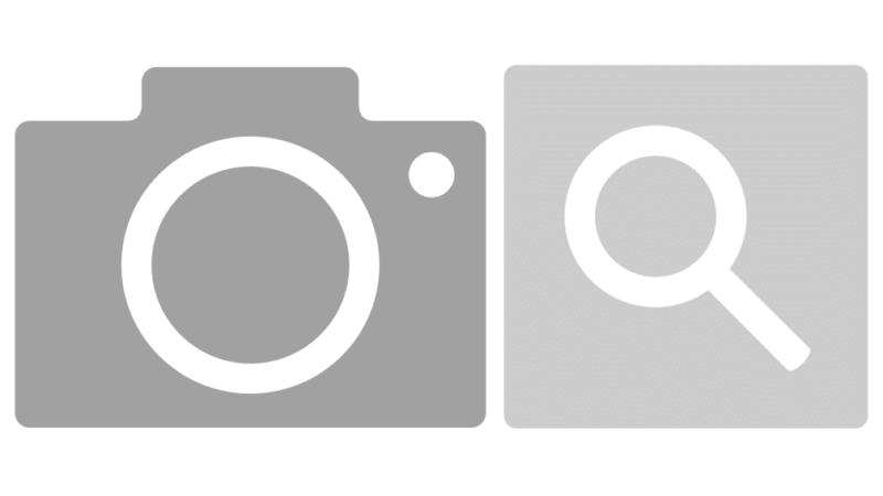 Bilder-Suche-Icon