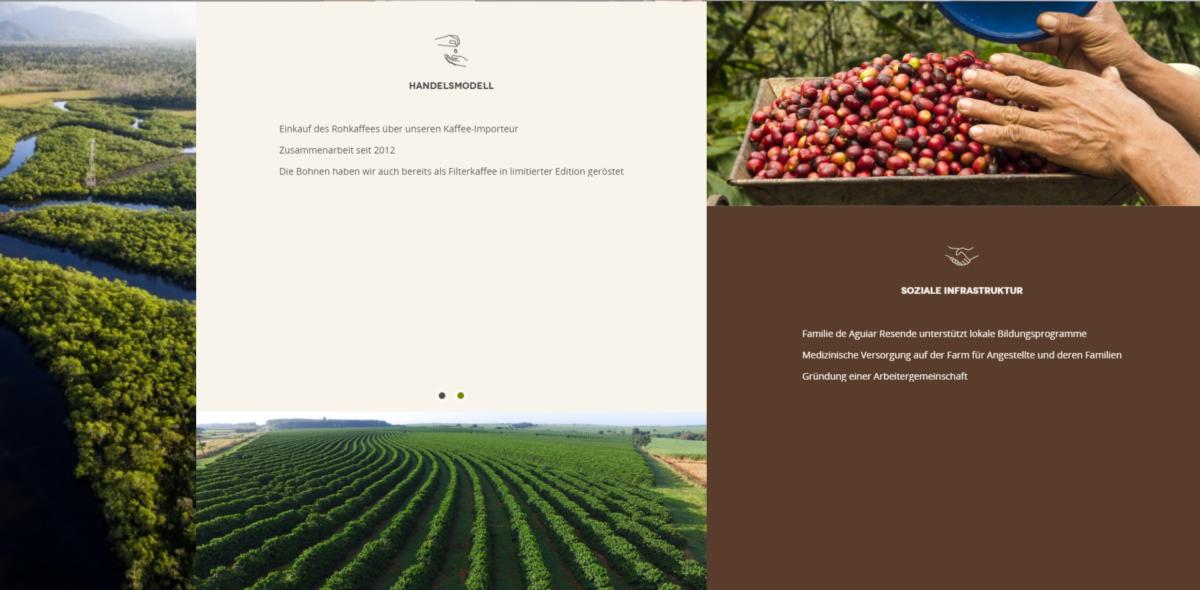 greencupcoffee - Storytelling einkaufswelten shopware