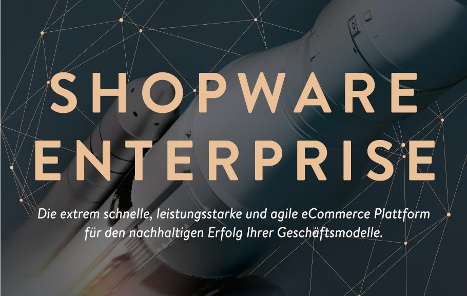 Shopware Enterprise Projekt mit WEBneo